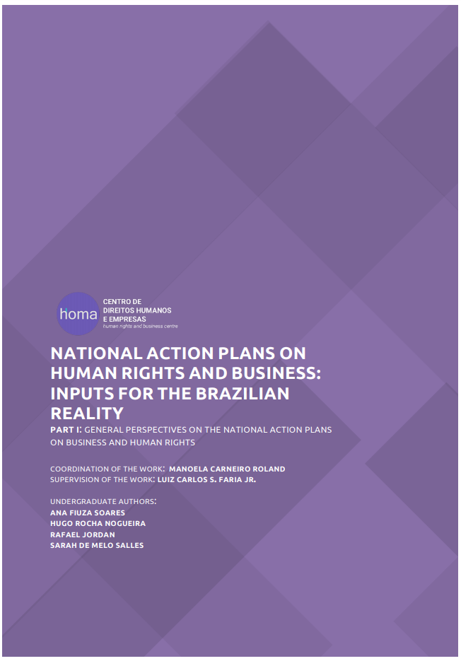 National Action Plans on Human Rights and Business: Inputs for the Brazilian Reality | General Perspectives