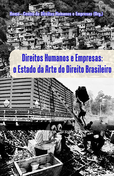 Human Rights and Business: the State of the Art of Brazilian Law